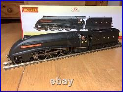 Hornby R3441 LNER 4-6-2 A4 Class Loco 4499 Sir Murrough Wilson TTS DCC Sound